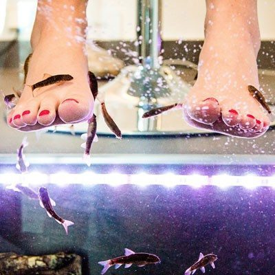 "Fish pedicure ""sex and the city"" - Barcelona"