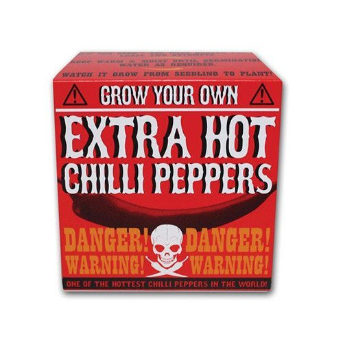 Grow your own - extra scharfer Chili